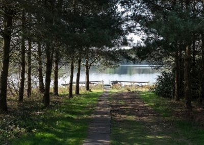 New Platt Fisheries | Trout Fishing Lake Cheshire | path to lake